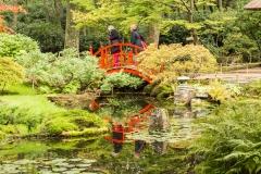 Japanse Tuin Clingendael Den Haag 5
