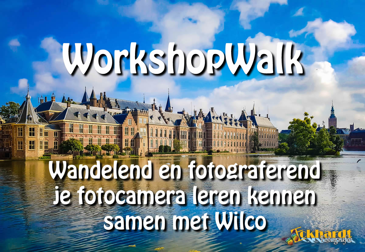 Workshop flirten den haag