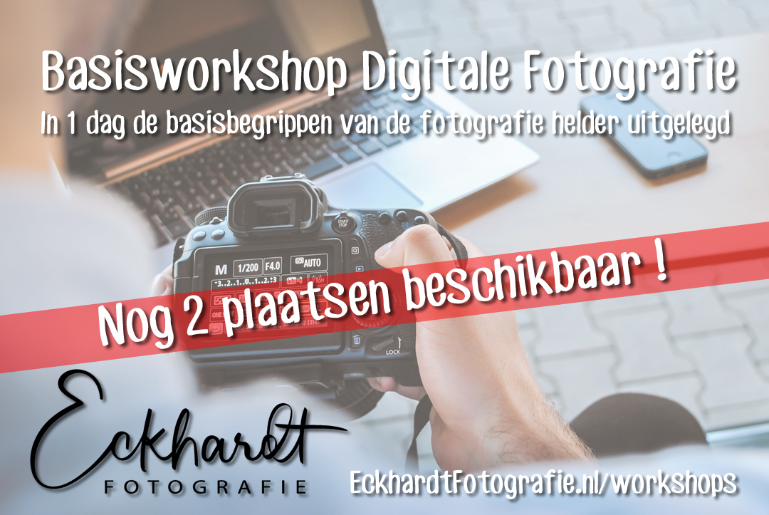 workshop fotografie den haag