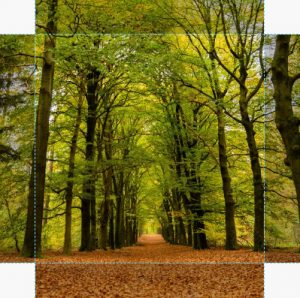 Canvas Herfst