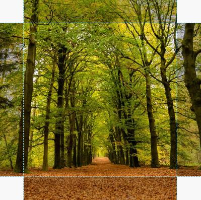Canvas Herfst