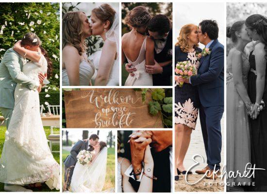 Prachtige bruidsparen, prachtige trouwfoto's