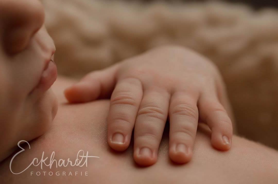 De newborn fotograaf komt naar jou toe
