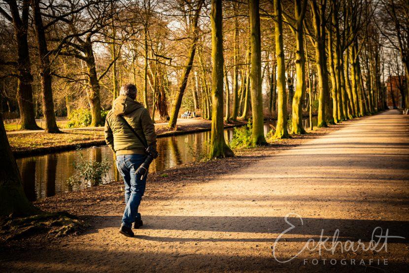 Fotograferen in het bos