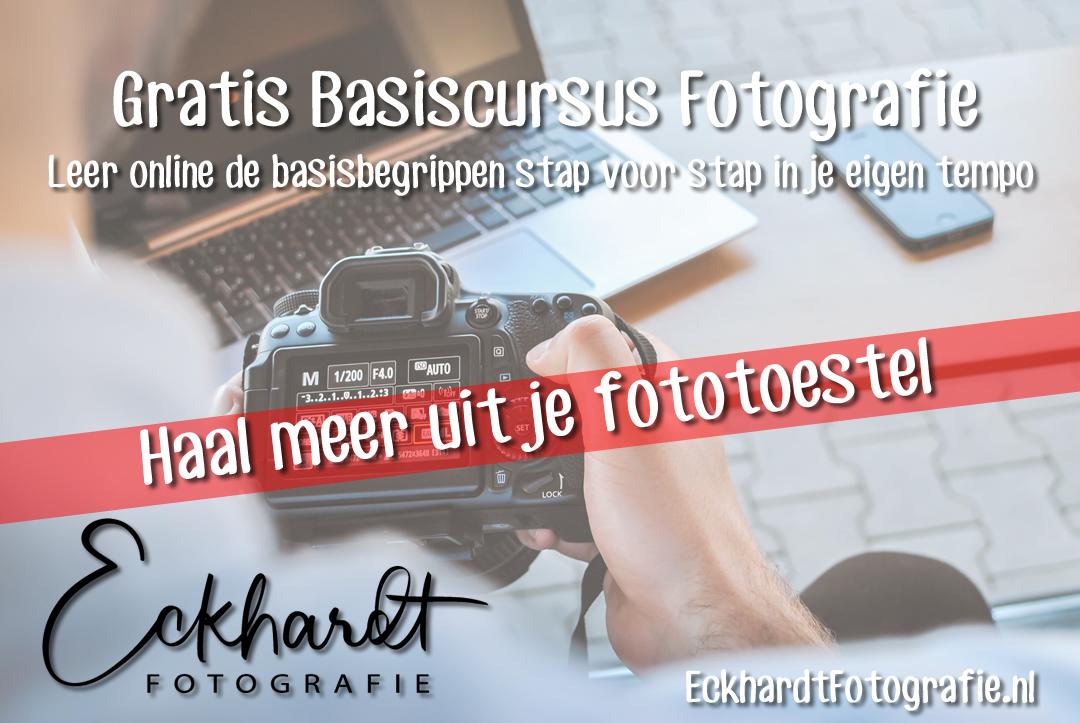 Gratis Cursus Fotografie